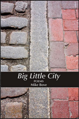 Big Little City