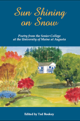 Sun Shining on Snow: Poetry from the Senior College at the University of Maine at Augusta